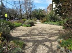 Sonoma Waterwise Garden pathway
