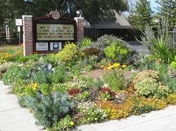Sonoma Waterwise Garden - west succulent garden