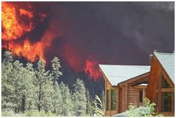 Oregon. Photo credit: US Forest Service https://www.usda.gov/media/blog/2015/10/27/look-life-wildland-urban-interface