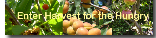 harvesthungrybanner